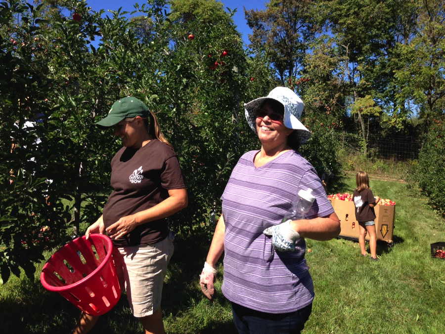 We Harvested Produce for Those in Need – and Had Fun Doing It!